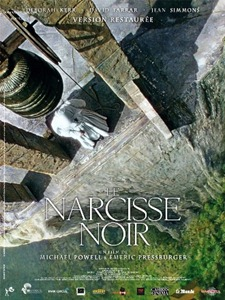 Narcisse_noir_46