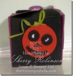 halloween box teresa 003