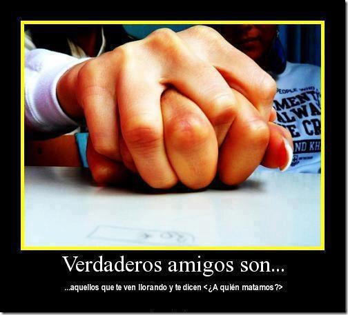 verdaderos amigos (14)
