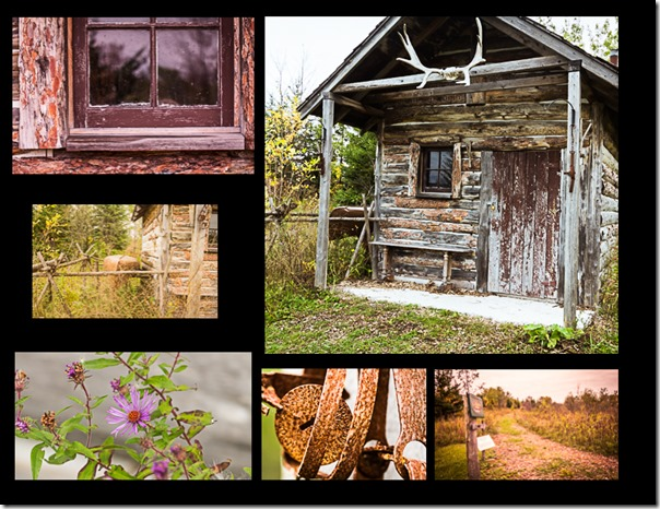 Trappers Cabin collage