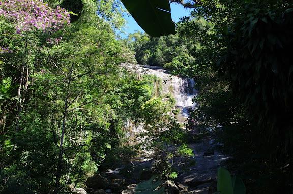 Cachoeira do Escada (Ubatuba, SP). 6 février 2012. Photo : J.-M. Gayman