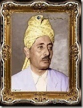 السلطان فضل بن علي