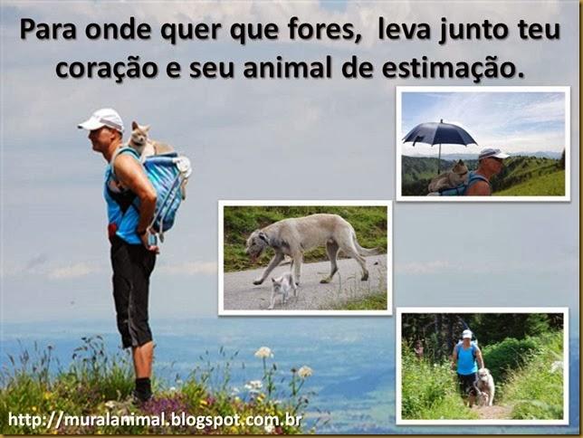 viagem-animais