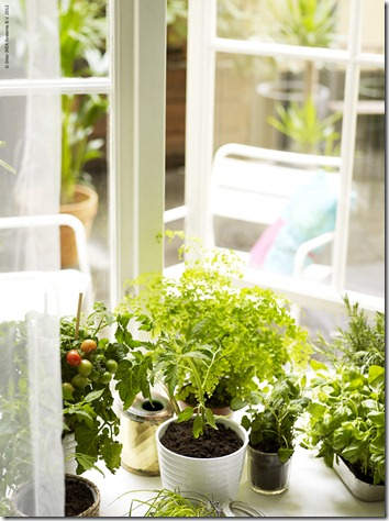 ikea_ecoration_windowfarming_0