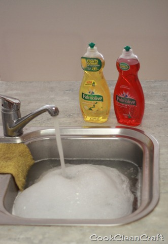 Palmolive Dishwashing Review (5)
