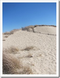 3.22.2012 Race Point sand dunes