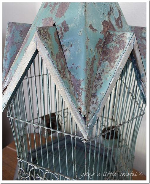 bird cage3_edited-1