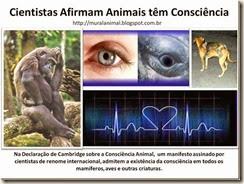 Cientistas Afirmam Animais têm Consciência_thumb[1] (1)