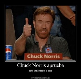 chuck_norris_approved_4