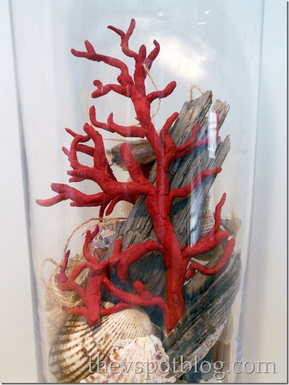 red coral, sea shells, apothecary jar, decor