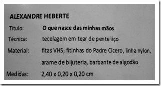 Alexandre Heberte 04 de setembro (37)