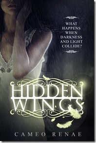 hidden_wings