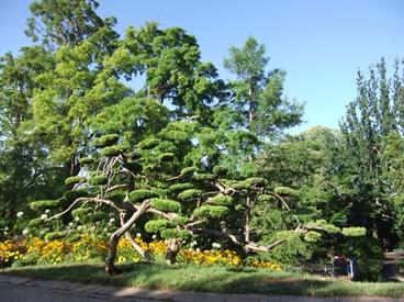 jardín de los Poetas, Beziers