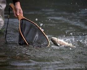 Steele_Baird hand trout net.jpg