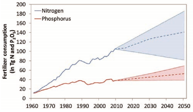 Trends in global mineral fertilizer consumption for nitrogen and phosphorus and projected possible futures,1960-2050. The amounts of nitrogen and phosphorus in 2050 will depend on present-day decisions (expressed as N and P2O5). Graphic: Global Partnership on Nutrient Management (GPNM) in 'Our Nutrient World'