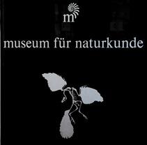 01_Berlino_IMG_7376 (Medium)