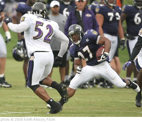 'Ray Rice and Ray Lewis' photo (c) 2009, Keith Allison - license: http://creativecommons.org/licenses/by-sa/2.0/