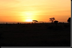 October 18 2012 Serengeti Sunrise
