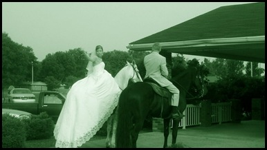 horse - dress back
