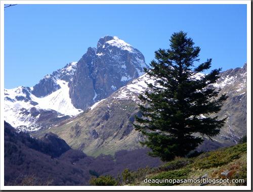 Arista NO y Descenso Cara Oeste con esquís (Pico de Arriel 2822m, Arremoulit, Pirineos) (Isra) 9485