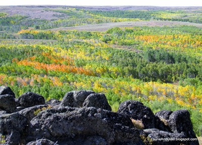Fall color on Steens Mountain