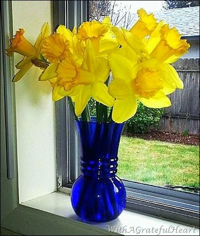Sunny Day Daffodils
