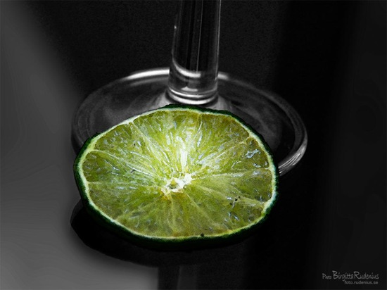pm_20110928_lime1a
