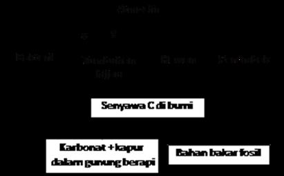 daur biogeokimia unsur C