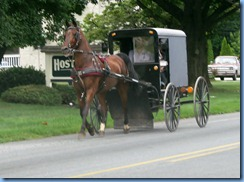 1682 Pennsylvania - Lincoln Highway - Amish buggy