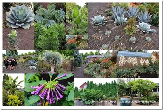 140713 John Kuzma Garden