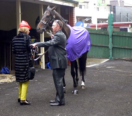 gai waterhouse_fiorente 1