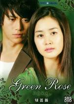 Hoa Hồng Xanh ( Green Rose )