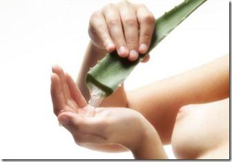 Productos para el Cabello con Aloe Vera2