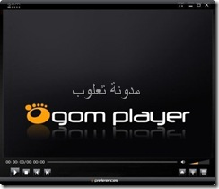 GOM Player 2013