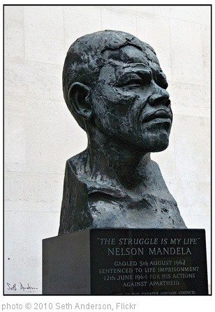 'Nelson Mandela - The Struggle is My Life' photo (c) 2010, Seth Anderson - license: http://creativecommons.org/licenses/by-sa/2.0/