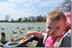 Feeding the Ducks 020