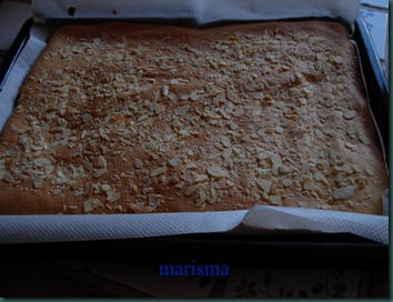 recetas mediados julio11 017