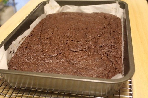 sourdough-brownies005