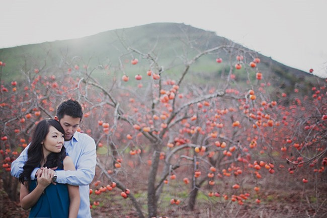 persimmon_engagement