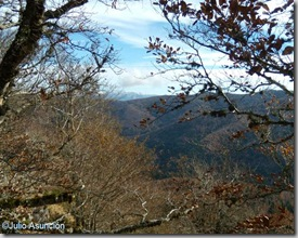 Panorámica desde el Malgorra - Selva de Irati