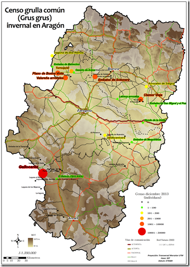 Censo Aragón Grullas diciembre 2013