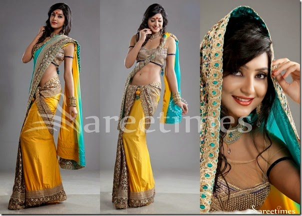 Avantika_Half_and_Half_Drape_Saree