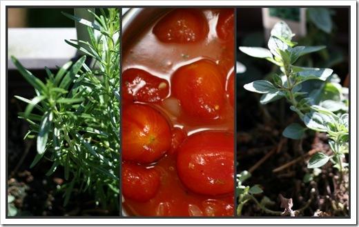 tomato_sauce_collage