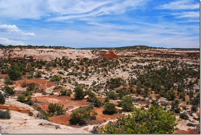 05-17-14 B Natural Bridges NM (123)