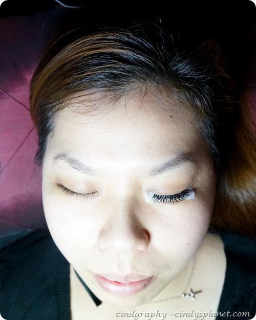 Pink Passion Eyelash Extension8