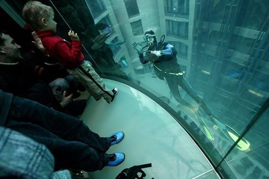 gigantskiy-akvarium-3