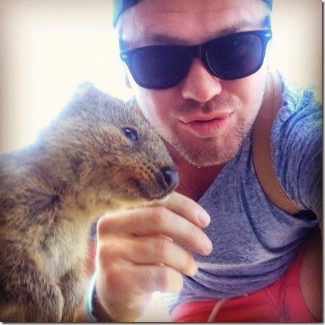 selfies-australian-quokka-003