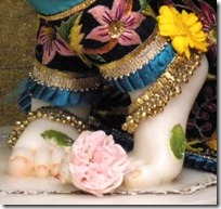 Lord Krishna's lotus feet