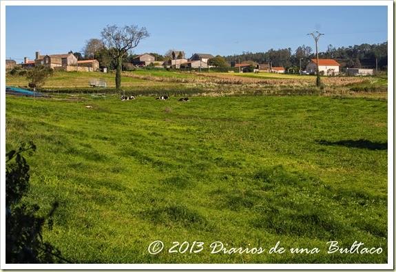 Refugio_Verdes-85