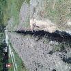 bolesky-elektro-2008-005.jpg